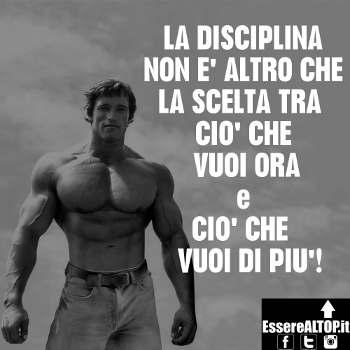 immagine motivazionale Schwarznegere disciplina e frase